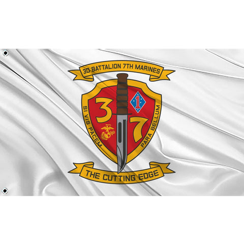 3rd Battalion 7th Marines logo on white flag