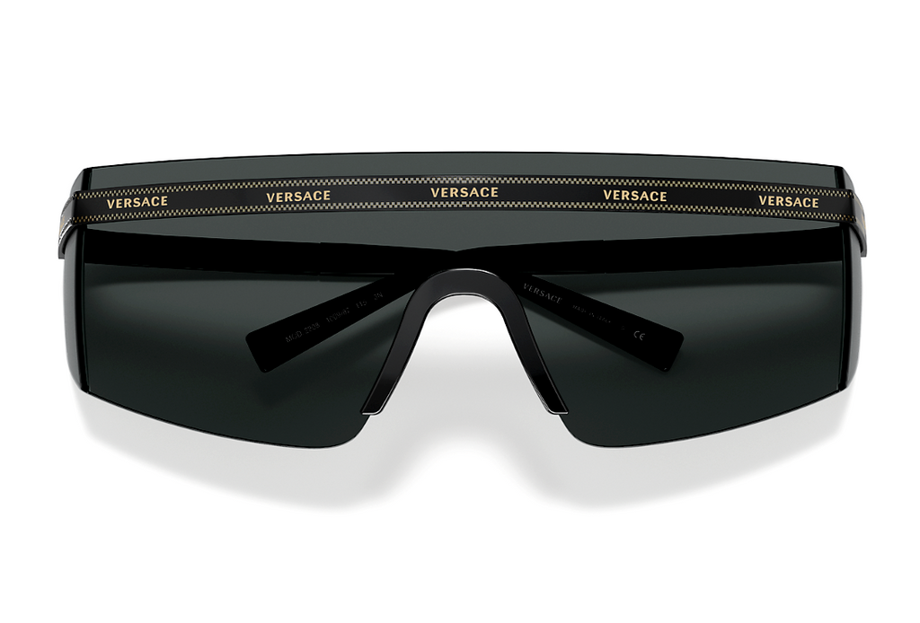Versace Everywhere Unisex Sunglasses VE 2208 100987 3