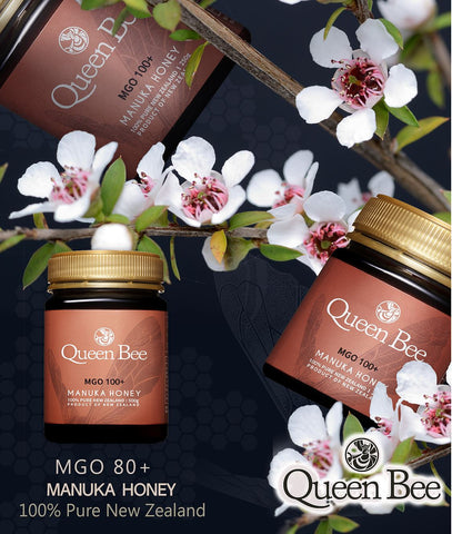 Queen Bee 마누카꿀 (MGO 100+) 500g