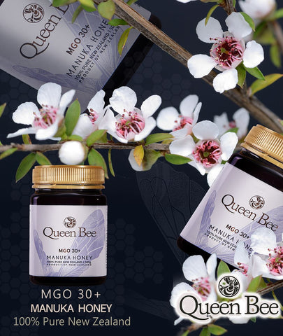 Queen Bee 마누카꿀 (MGO 30+) 500g