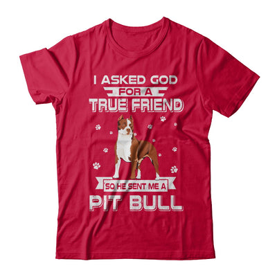 I Asked God For A True Friend So Sent Me Pitbull Dog T-Shirt & Hoodie | Teecentury.com