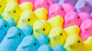 Peeps of various colours lined up in rows