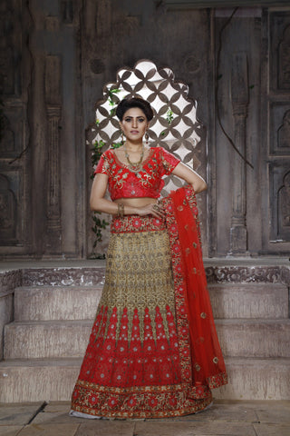 Beige Color Net Zari & Stone Work Semi Stitched Lehenga Choli