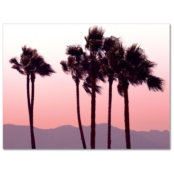 Palm's Range - 12x16 Canvas