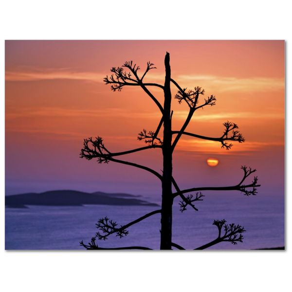 Sunset By Hvar - 12x16 Canvas