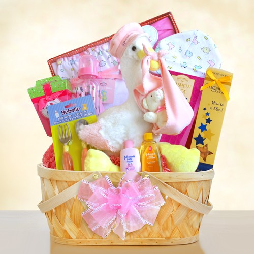 Special Stork Delivery Baby Girl Gift Basket, [Premier Gifts and Balloons], Gift Basket, Premier Gifts 'n Balloons