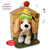 Barney the Birthday Beagle Play Box, [Premier Gifts and Balloons], Plush Toys, Premier Gifts 'n Balloons