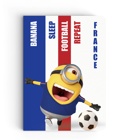 Flapbook Limited Edition - France - Despicable Me/Minion