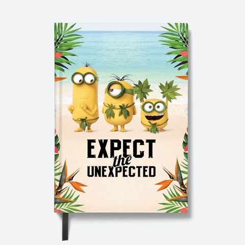 Flapbook Hardbound - Expect the Unexpected - Despicable Me/Minions