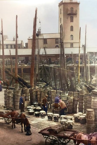 North Shields Fish Quay image no 12