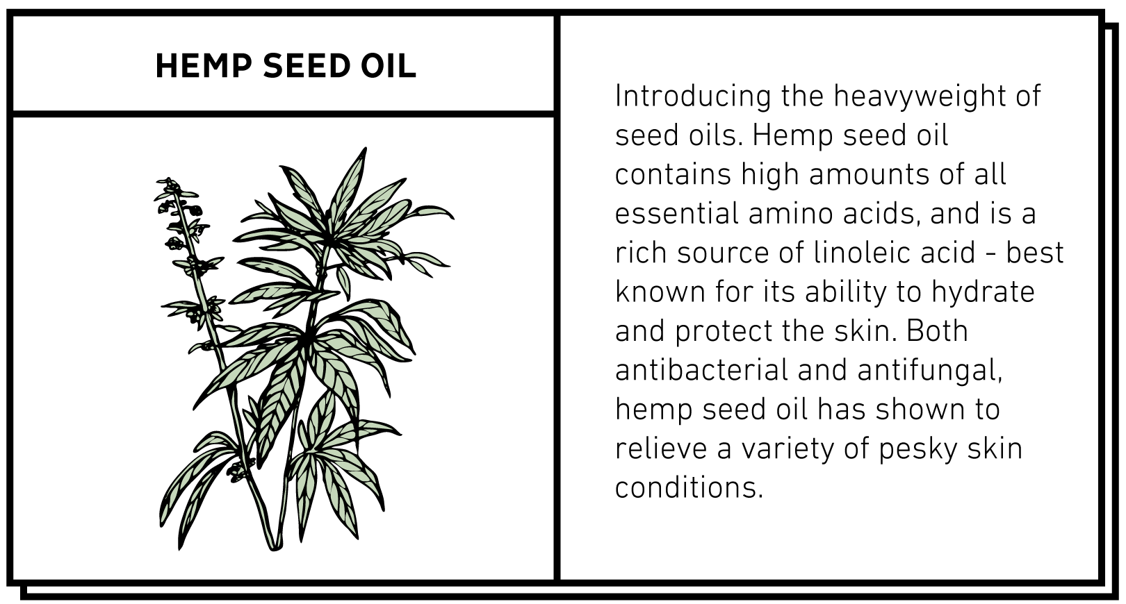 Hemp Seed Oil - Hempme