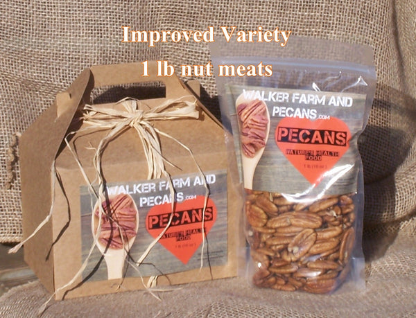 Improved Variety Pecan Meat Halves