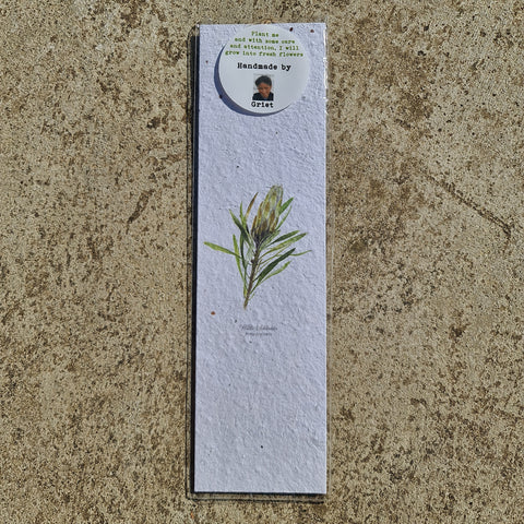 Protea Green - Growing Paper Bookmark