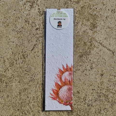 Proteas - Growing Paper Bookmark