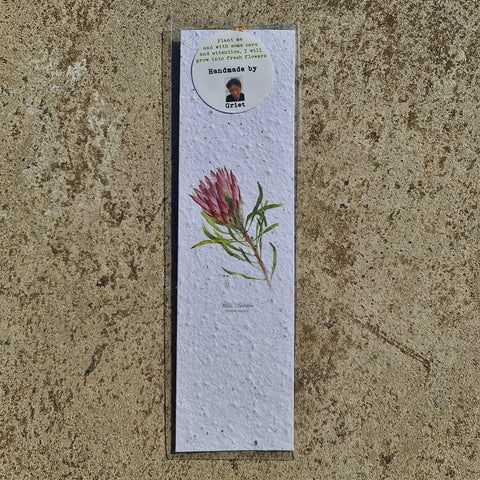 Protea Pink - Growing Paper Bookmark