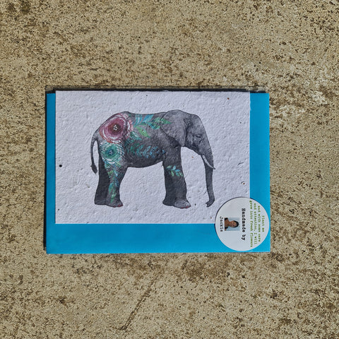 Elephant - Growing Paper Greeting Card