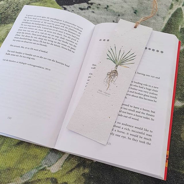 Cactus - Growing Paper Bookmark