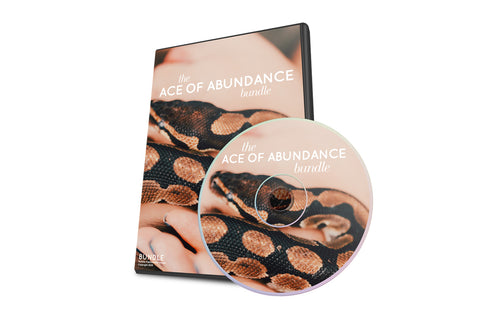 ACE OF ABUNDANCE BUNDLE