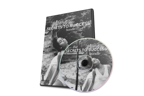 SECRETS TO SUCCESS BUNDLE