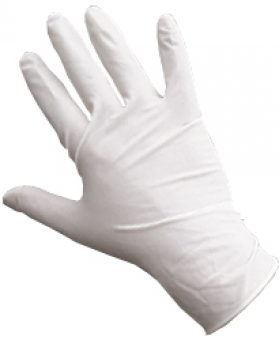 Latex Gloves Powder-Free Large | Box of 100