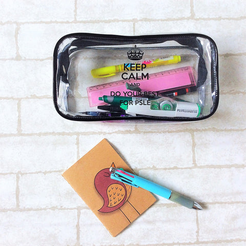 PSLE Clear Pencil Pouch | For P6s students | Great as Children's Day Gift