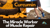 Curcumin Repairs Muscle Damage