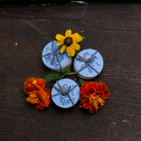 Lovewild Design Wildflower Seed Coins