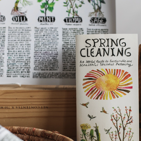 Spring Cleaning Zine