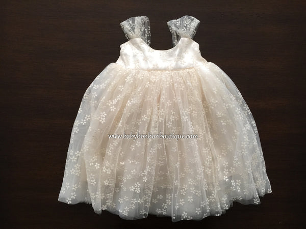 Baptism Tulle Dress, Champagne Tulle Dress