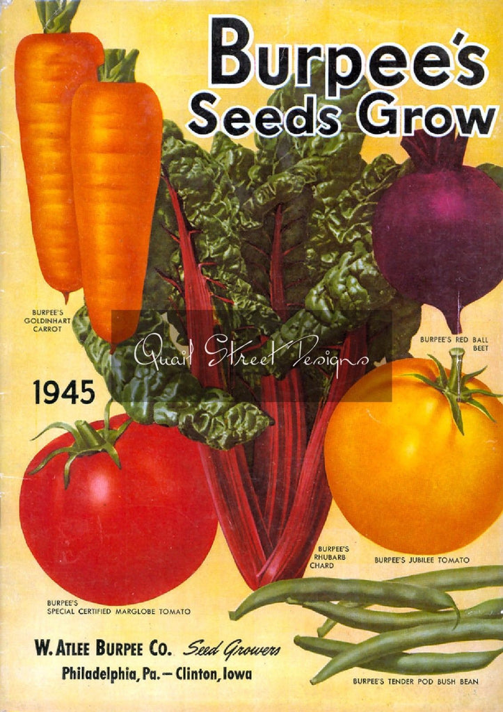Vintage Seed Catalog Reprint: Burpee's Seed - 1945 - Seeds Grow Vegetables  8X10