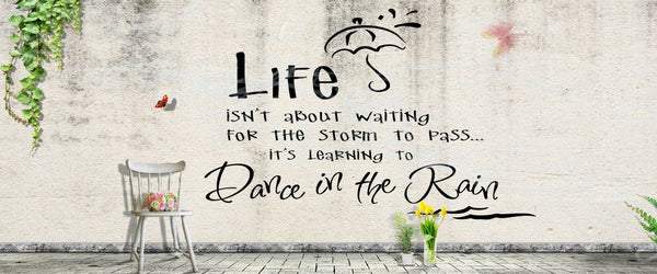 Waiting For The Storm To Pass  Dance In The Rain - Vinyl Decal Free Ship 1023