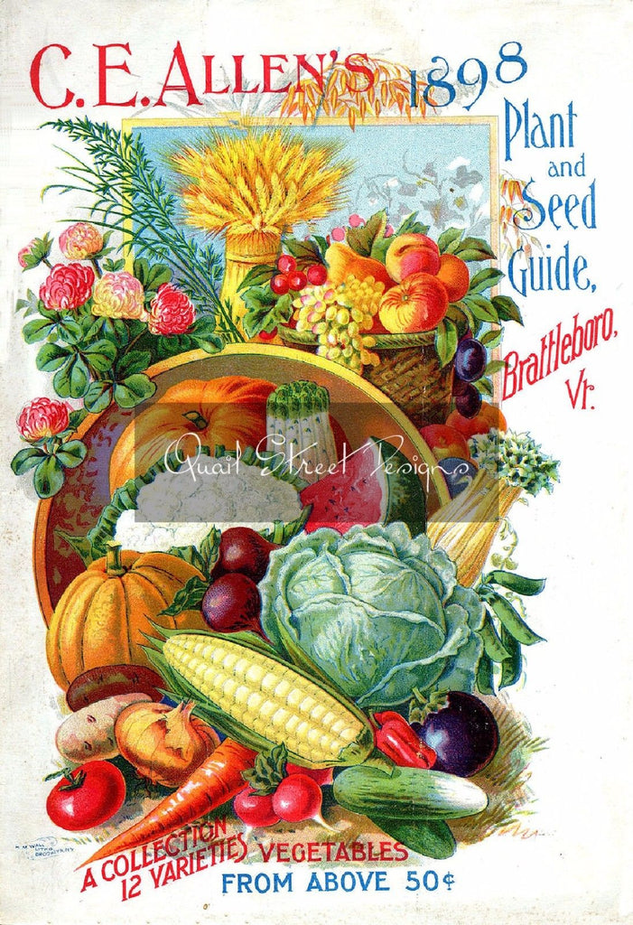 Vintage Seed Catalog - Reprint:  CE Allen's 1898 Plant & Seed Guide 8X10 ALLEN