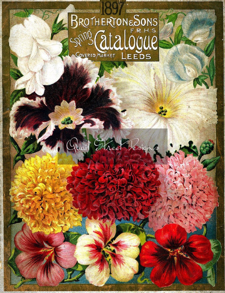 Vintage Seed Catalog - Reprint: Front Cover Brotherton & Son Catalog 1897 - 8X10