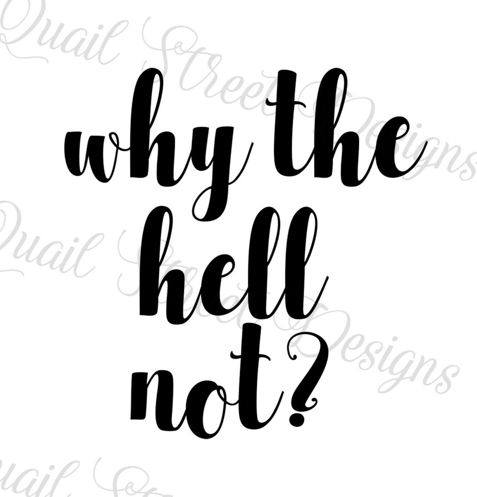 Why The Hell Not? - Vinyl Decal Free Shipping 1070