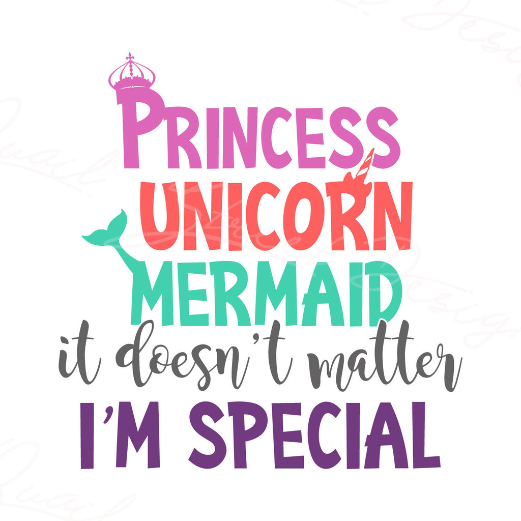 Princess Unicorn Mermaid It Doesn't Matter I'm Special  - Vinyl Decal Free Shipping #1224