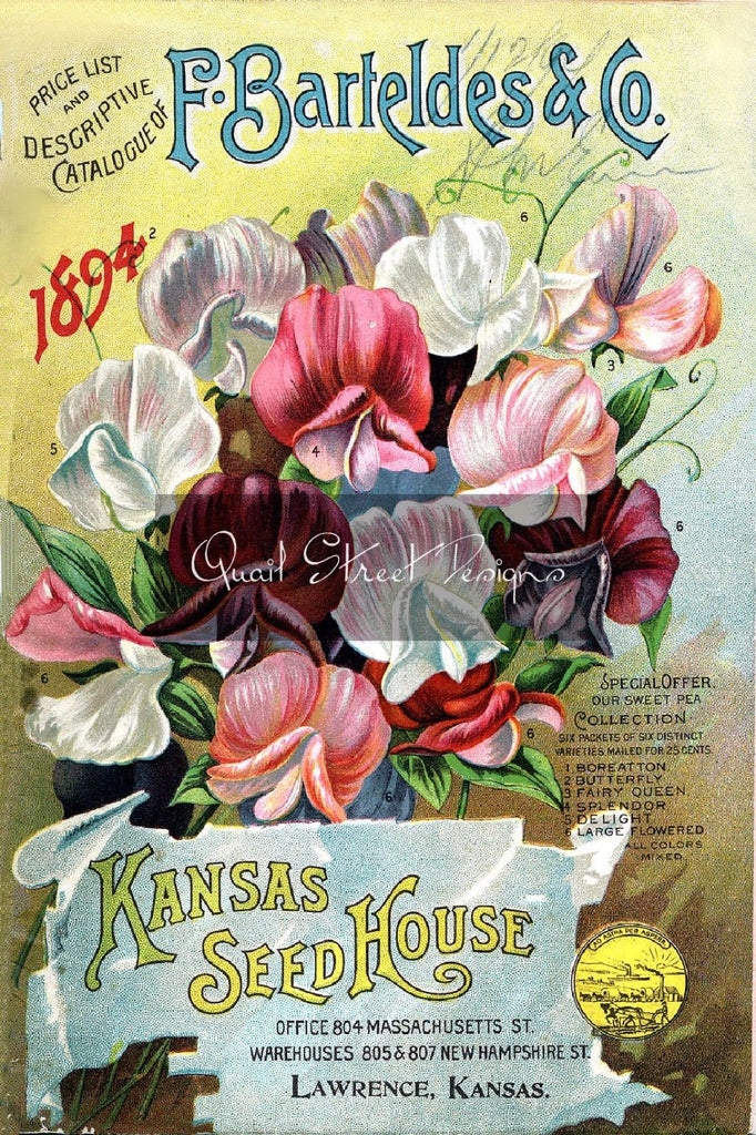 Vintage Seed Catalog - Reprint:  Bartelde Plant & Seed Guide 8X10 - 1894