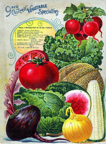 Vintage Seed Catalog Digital Download - Alneer Back Plant & Seed Guide QSDP-8