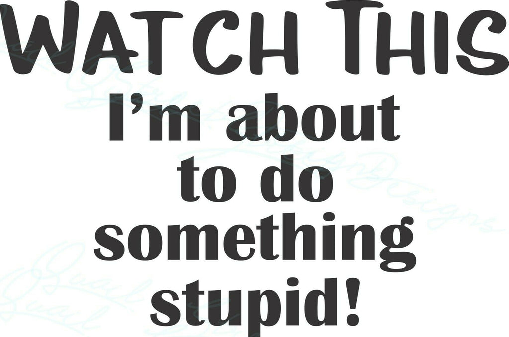 Watch This I'm About To Do Something Stupid - Vinyl Car Decal Free Shipping 2005