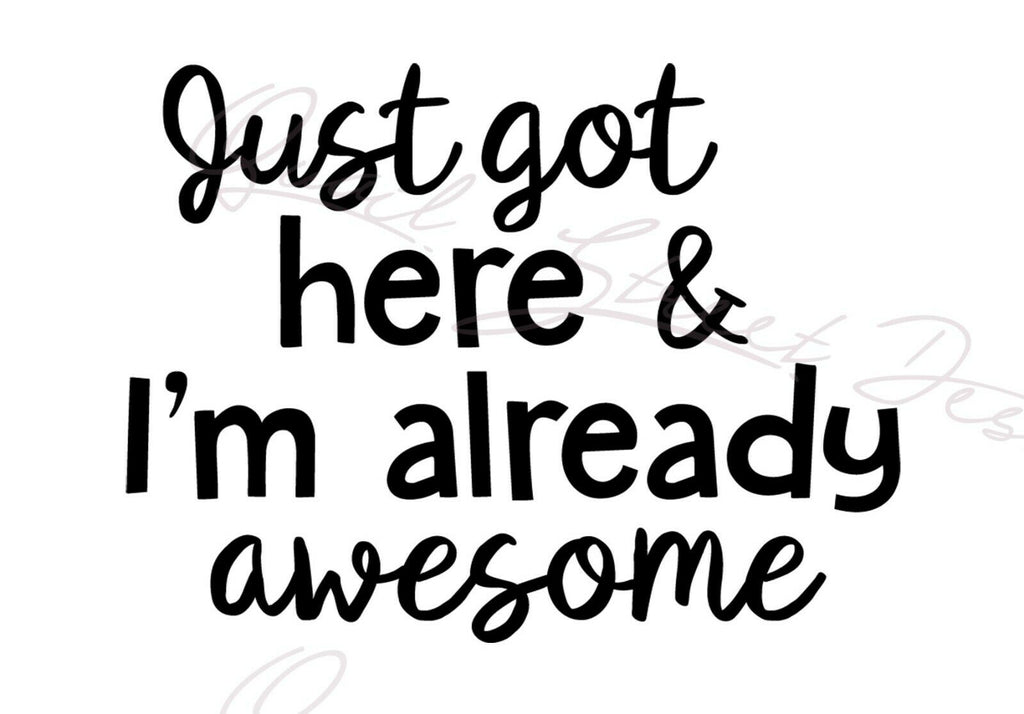 Just Got Here And I'm Already Awesome - Vinyl Decal Free Shipping #83