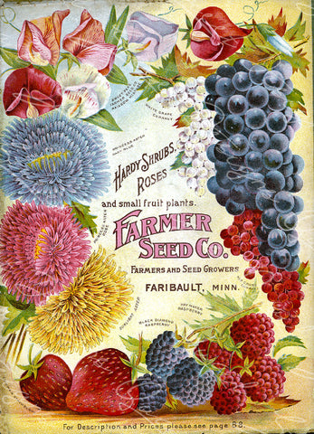 Vintage Seed Catalog - Reprint:  Cover of Farmer Seed Company Plant & Seed Catalog -  8X10 Print  QSDP-120