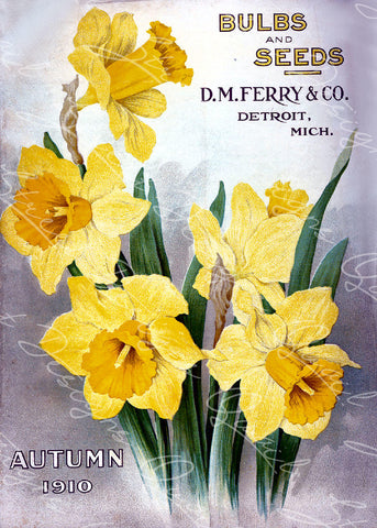 Vintage Seed Catalog - Reprint:  Cover of D.M. Ferry & Co. Autumn 1910 Plant & Seed Catalog -  8X10 Print  QSDP-125