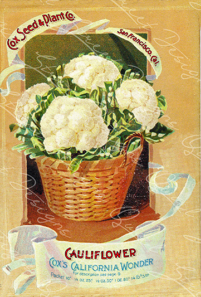 Digital Download - Vintage Seed Catalog - Cover of Cox  Plant & Seed Catalog   QSDP-95