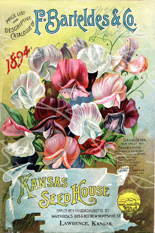 Vintage Seed Catalog - Reprint: F. Barteldes & Co. 1894 Plant & Seed Catalog Kansas Seed House Lawrence Kansas Sweet Pea Collection  8X10 Print  QSDP-13