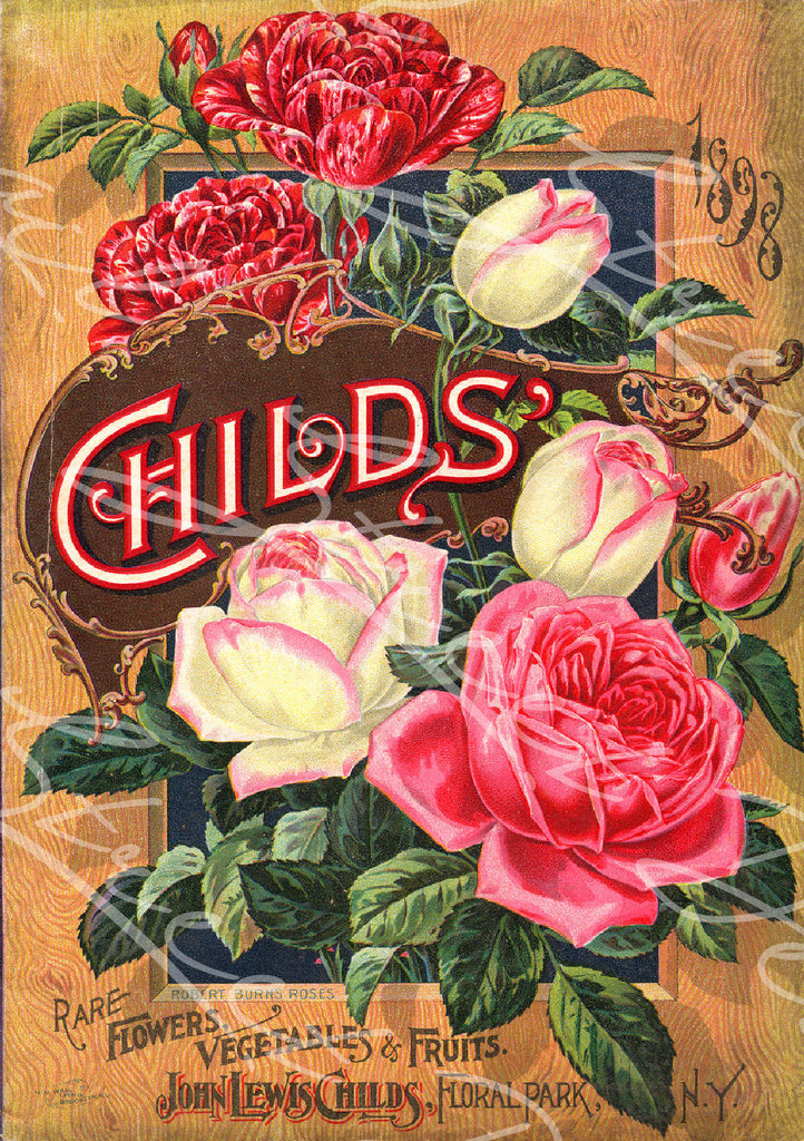 Vintage Seed Catalog - Reprint: Front Cover of 1898 Plant & Seed Catalog  Rare Flowers Vegetables and Fruit -  8X10 Print  QSDP-61