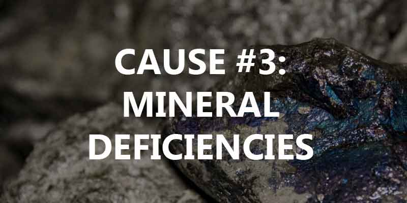 mineral deficiencies and cramps - Mag 3D