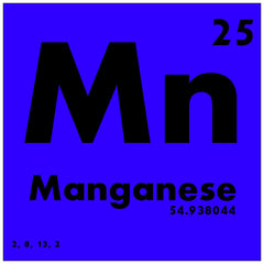 Joint Clinic manganese supplement saltwrap