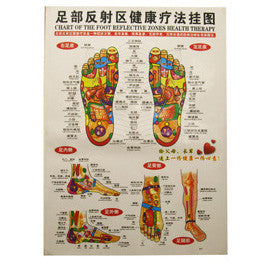 G-04 FOOT CHART - Acubest