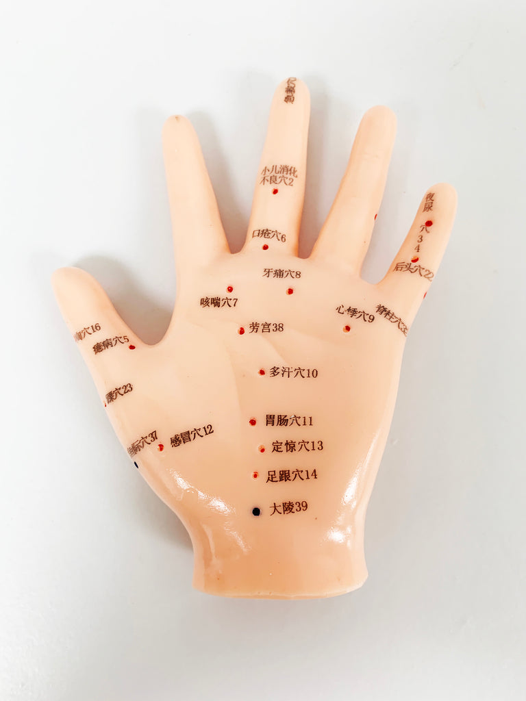 Acupuncture Hand Model /M-04, M-04A