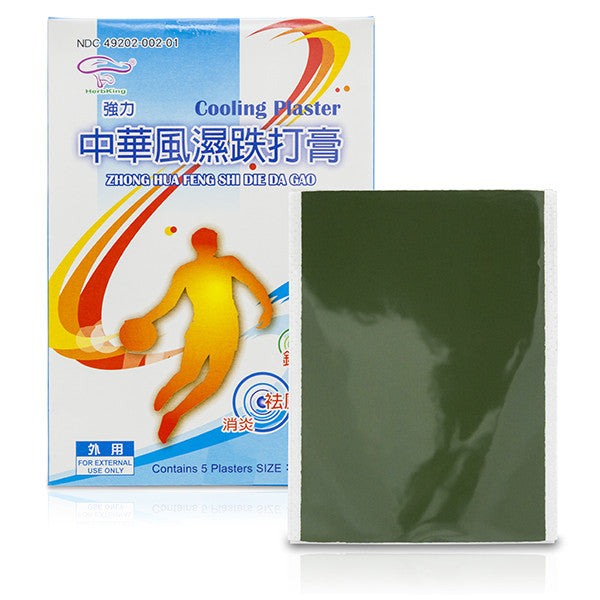 HerbKing Chinese Herbal Paste Pain Relief Plasters / Zhong Hua Feng Shi Die Da Gao / HK104