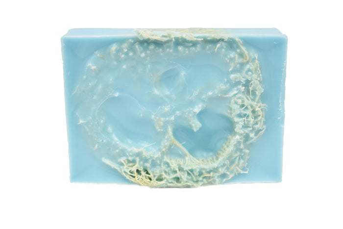 Bar Soap Breeze with Loofa Inside